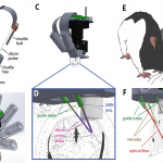 Miniaturized open source devices for calcium imaging, electrophysiology, and real-time control of neural activity